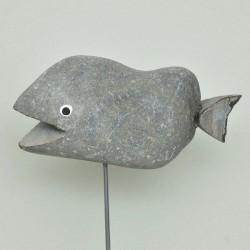 Steinfisch
